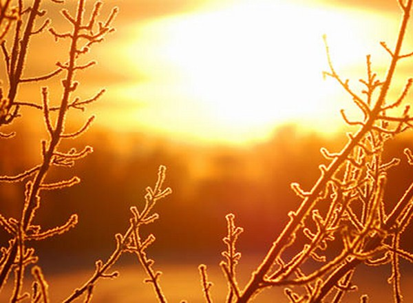 Froid hiver campagne