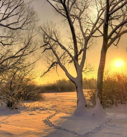Neige hiver campagne bretagne